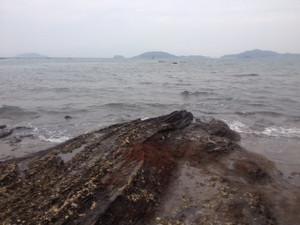 20121110ziiso_2