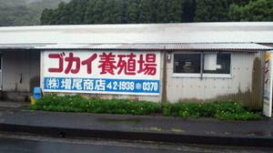 Nec_0183